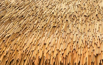what is thatch roofing?